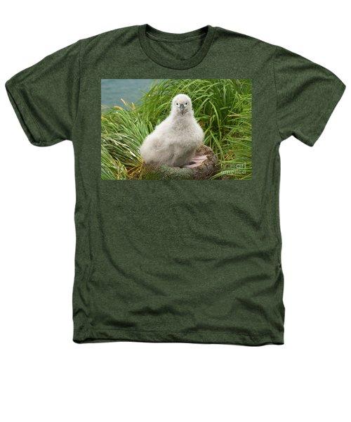 Grey-headed Albatross Chick Heathers T-Shirt
