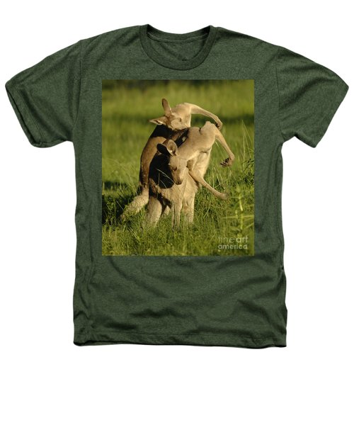 Kangaroos Taking A Bow Heathers T-Shirt by Bob Christopher