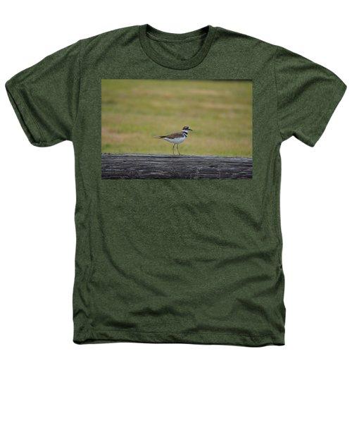Killdeer Heathers T-Shirt by James Petersen