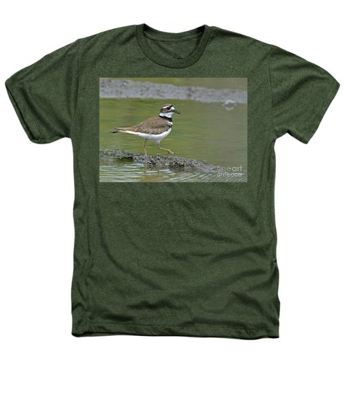 Killdeer Walking Heathers T-Shirt