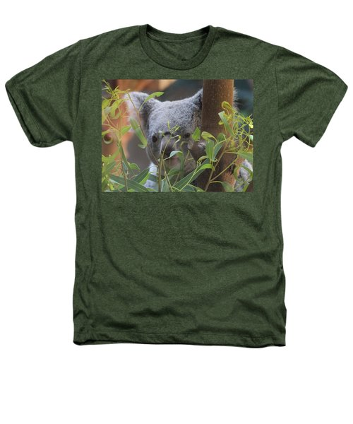 Koala Bear  Heathers T-Shirt by Dan Sproul