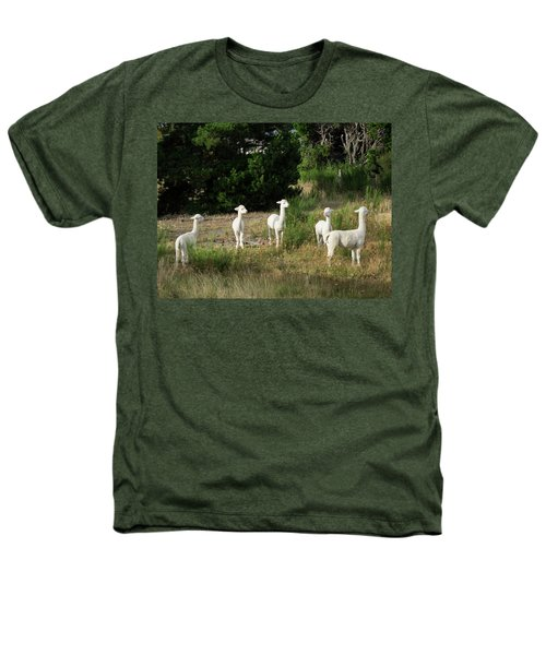 Llamas Standing In A Forest Heathers T-Shirt by Panoramic Images
