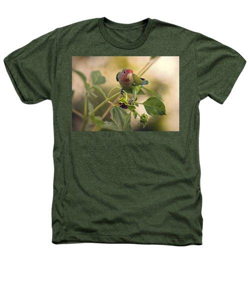 Lovebird On  Sunflower Branch  Heathers T-Shirt by Saija  Lehtonen