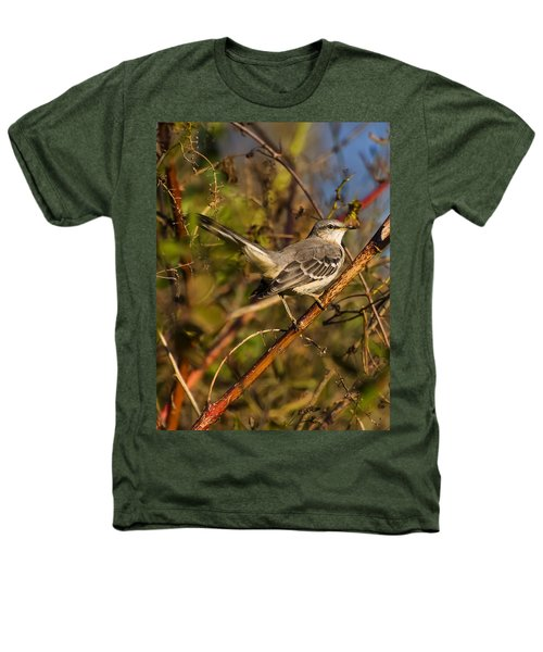 Northern Mockingbird Heathers T-Shirt by Chris Flees