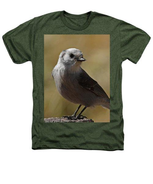 Northern Mockingbird Heathers T-Shirt