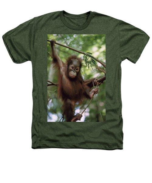 Orangutan Infant Hanging Borneo Heathers T-Shirt by Konrad Wothe
