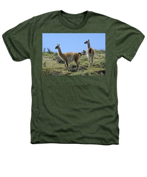 Patagonian Guanacos Heathers T-Shirt by Michele Burgess