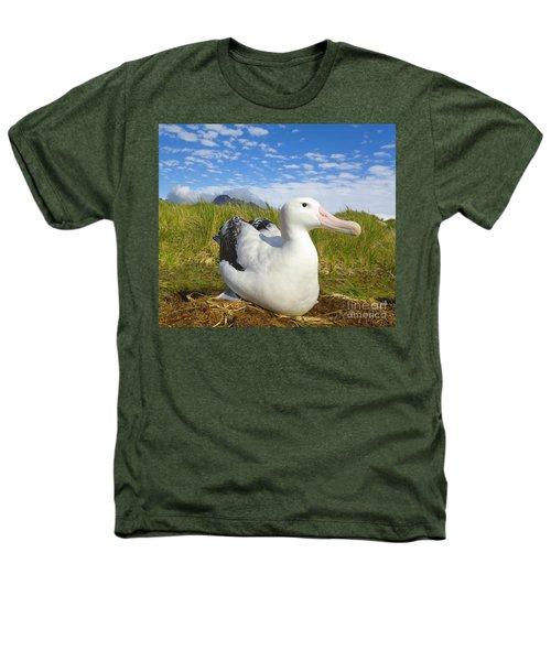 Wandering Albatross Incubating  Heathers T-Shirt
