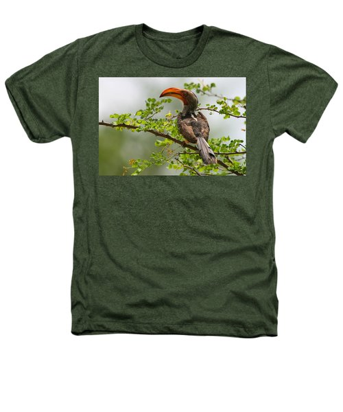 Yellow-billed Hornbill Heathers T-Shirt by Bruce J Robinson