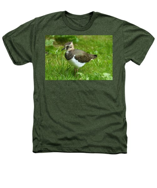 Young Lapwing Heathers T-Shirt