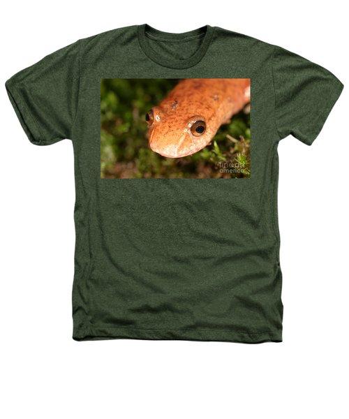 Spring Salamander Heathers T-Shirt by Ted Kinsman