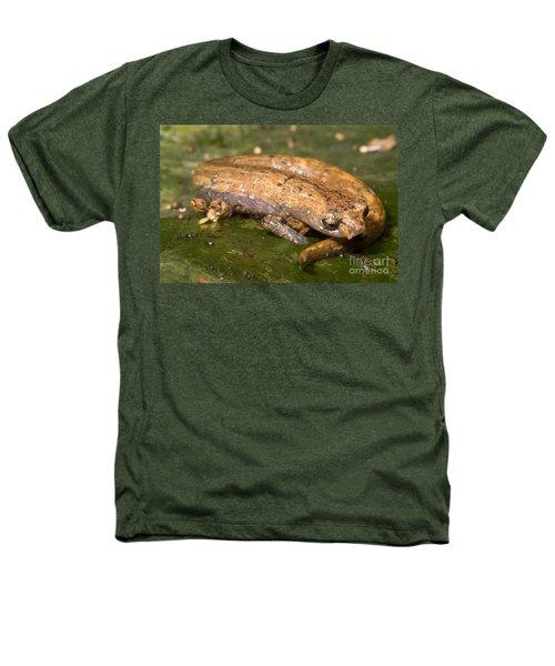 Bolitoglossine Salamander Heathers T-Shirt by Dante Fenolio