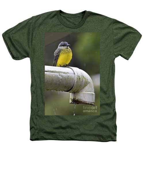Grey-capped Flycatcher Heathers T-Shirt by Heiko Koehrer-Wagner