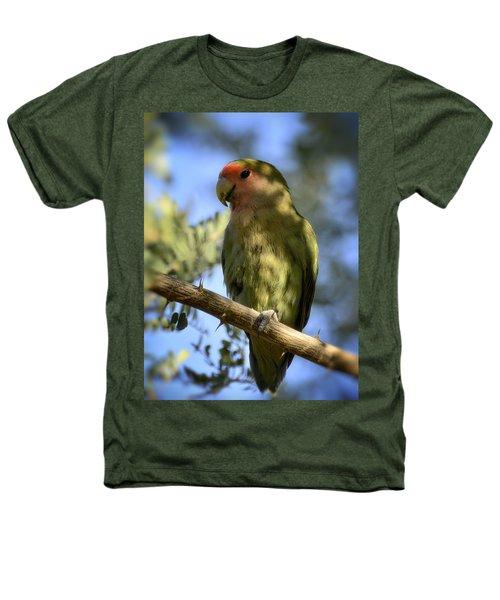 Pretty Bird Heathers T-Shirt by Saija  Lehtonen