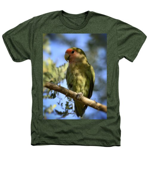 Pretty Bird Heathers T-Shirt