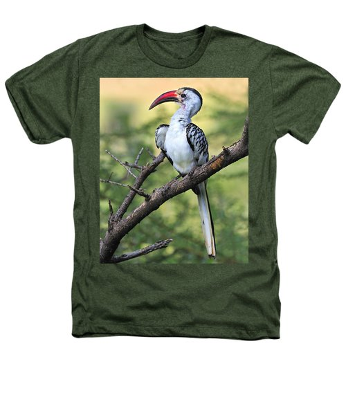 Red-billed Hornbill Heathers T-Shirt by Tony Beck
