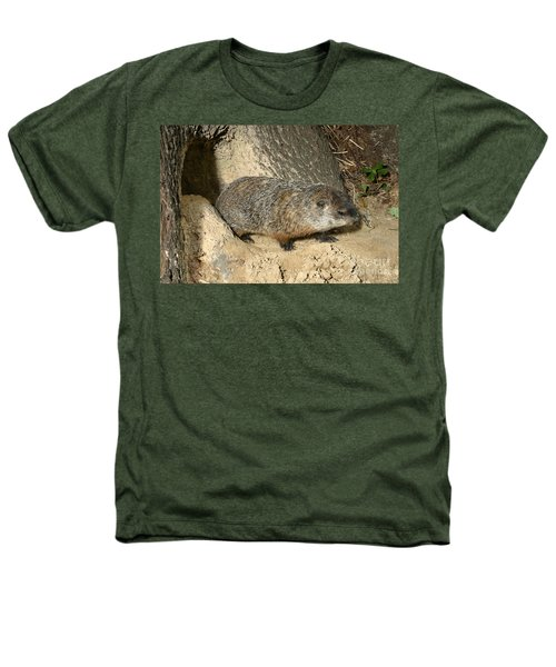 Woodchuck Heathers T-Shirt by Ted Kinsman