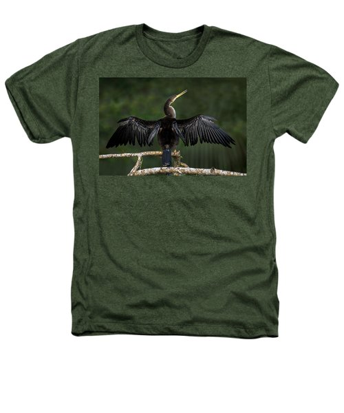 Anhinga Anhinga Anhinga Perching Heathers T-Shirt by Panoramic Images