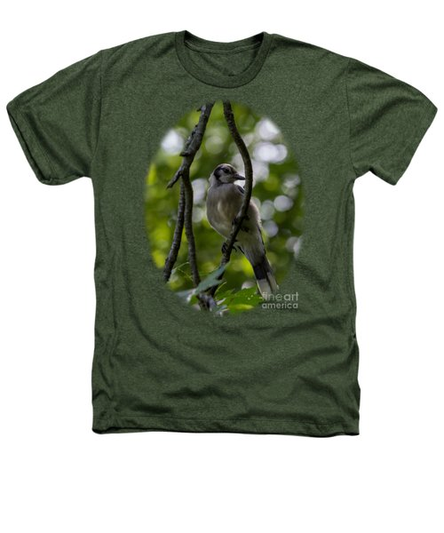 Afternoon Perch Heathers T-Shirt by Brian Manfra