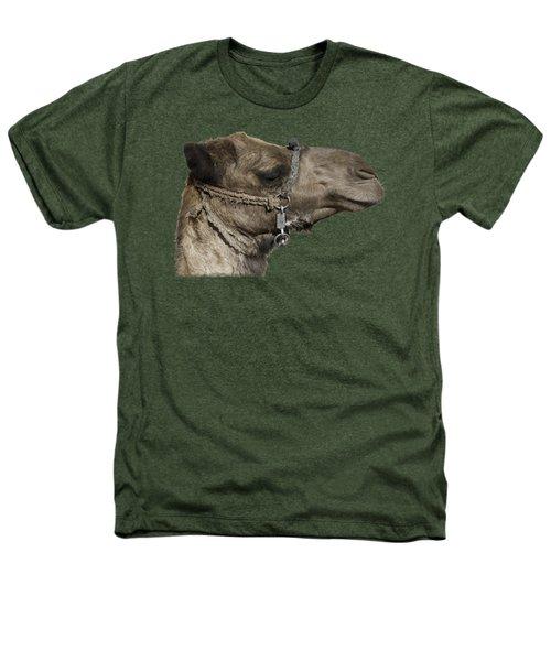 Camel's Head Heathers T-Shirt by Roy Pedersen