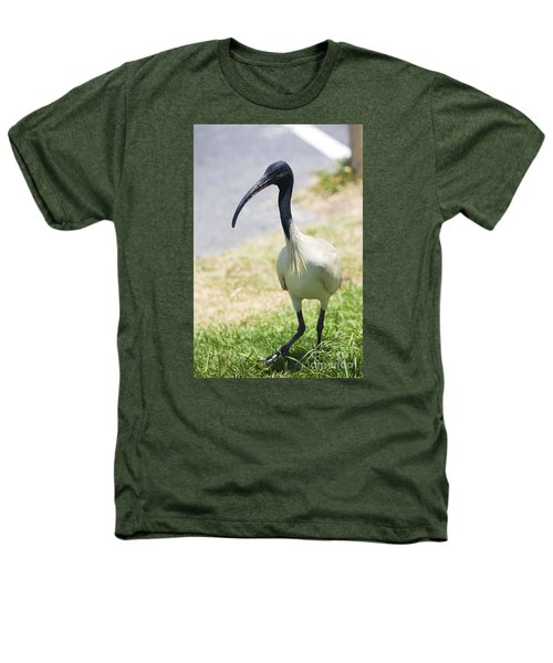 Carpark Ibis Heathers T-Shirt by Jorgo Photography - Wall Art Gallery