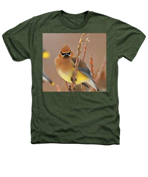 Cedar Wax Wing Heathers T-Shirt by Carl Shaw