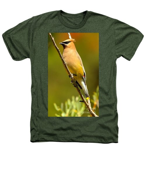 Cedar Waxwing Heathers T-Shirt by Adam Jewell