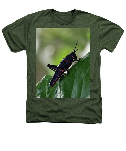 Eastern Lubber Grasshopper Heathers T-Shirt by Richard Rizzo