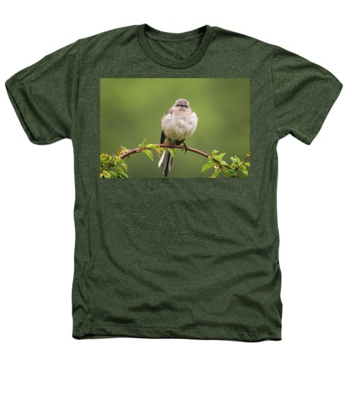Fluffy Mockingbird Heathers T-Shirt by Terry DeLuco