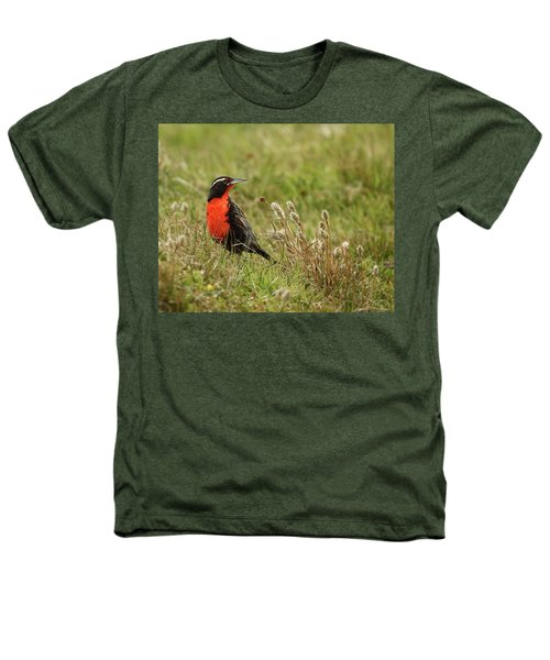 Long-tailed Meadowlark Heathers T-Shirt by Bruce J Robinson