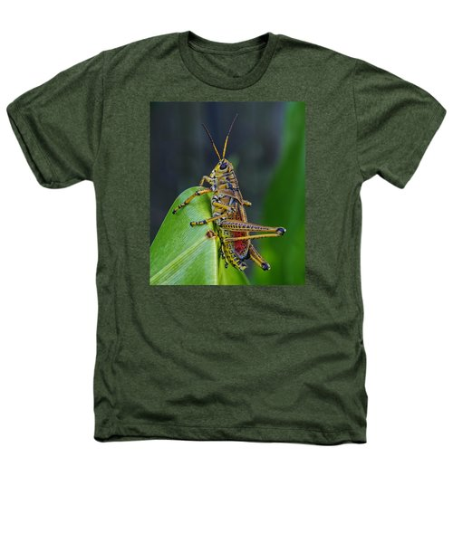 Lubber Grasshopper Heathers T-Shirt by Richard Rizzo