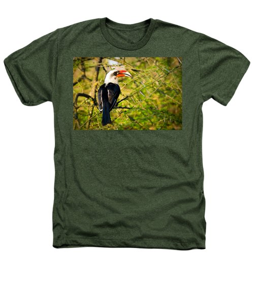 Male Von Der Decken's Hornbill Heathers T-Shirt by Adam Romanowicz