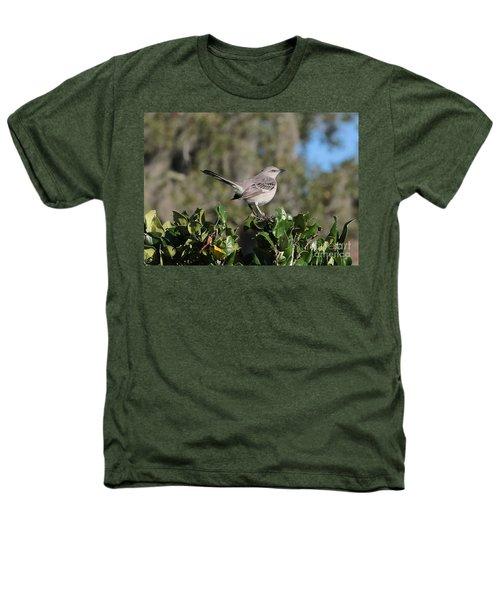 Northern Mockingbird Heathers T-Shirt by Carol Groenen