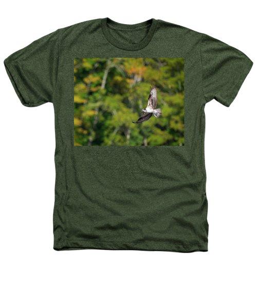 Osprey Heathers T-Shirt by Bill Wakeley