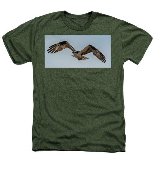 Osprey Flying Heathers T-Shirt by Paul Freidlund
