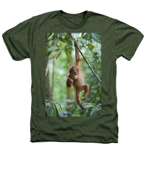 Sumatran Orangutan Pongo Abelii One Heathers T-Shirt