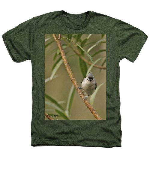 Tufted Titmouse Heathers T-Shirt