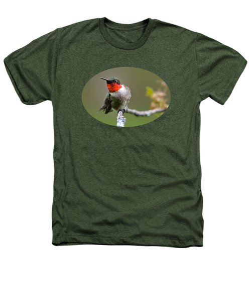 Wild Birds - Ruby-throated Hummingbird Heathers T-Shirt by Christina Rollo