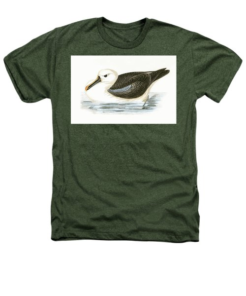 Yellow Nosed Albatross Heathers T-Shirt by English School