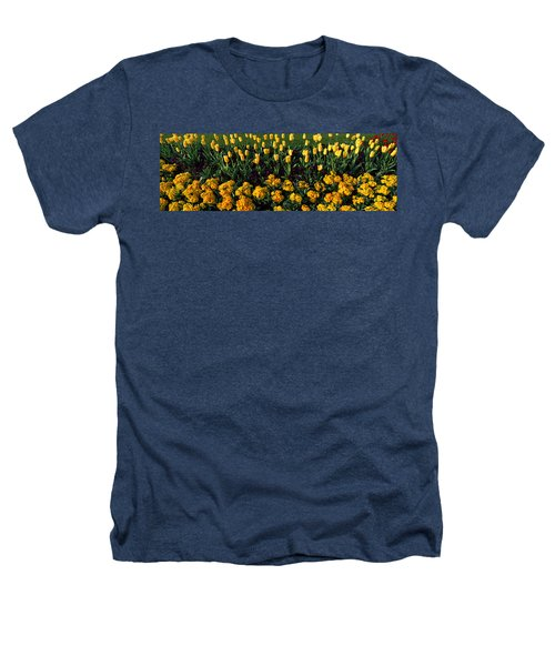 Flowers In Hyde Park, City Heathers T-Shirt by Panoramic Images