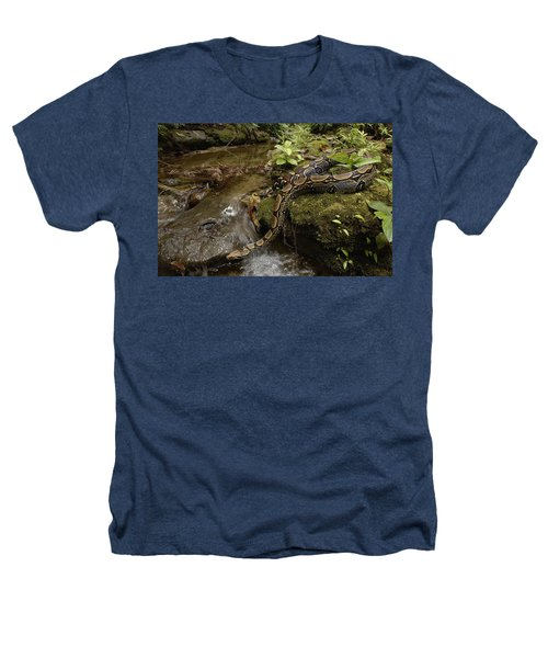 Boa Constrictor Crossing Stream Heathers T-Shirt by Pete Oxford