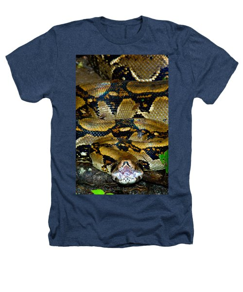 Close-up Of A Boa Constrictor, Arenal Heathers T-Shirt