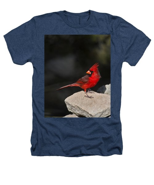 Male Cardinal Heathers T-Shirt