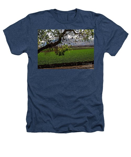 Panoramic Of Winter Lettuce Heathers T-Shirt by Robert Bales