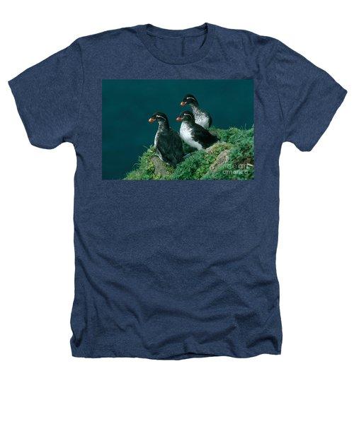 Parakeet Auklet Heathers T-Shirt