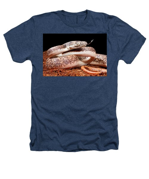Savu Python In Defensive Posture Heathers T-Shirt