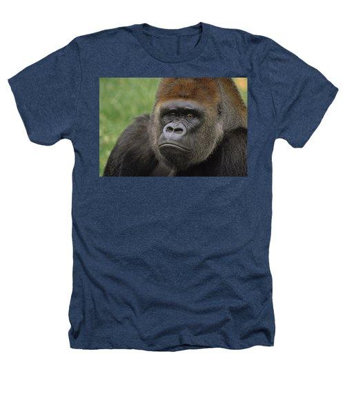 Western Lowland Gorilla Silverback Heathers T-Shirt by Gerry Ellis