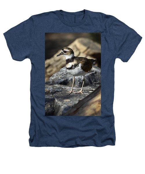 Killdeer Heathers T-Shirt by Saija  Lehtonen