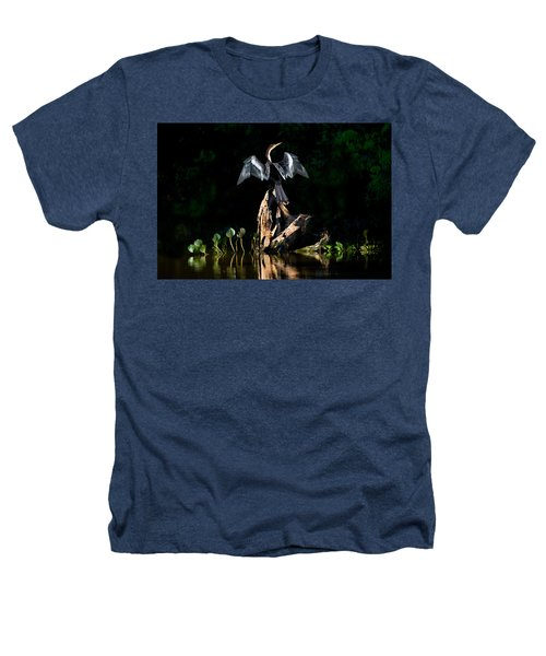Anhinga Anhinga Anhinga, Pantanal Heathers T-Shirt by Panoramic Images