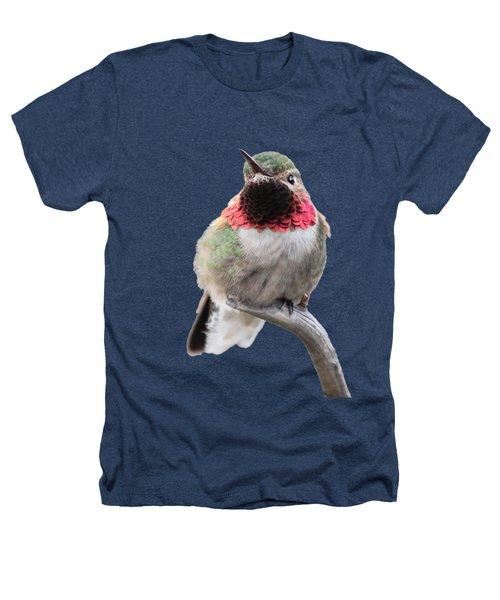 Broad-tailed Hummingbird Heathers T-Shirt